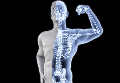 fitnessage