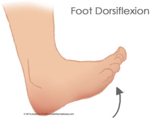foot-dorsiflexion-6