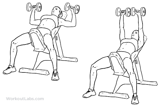 Incline_Dumbbell_Press1