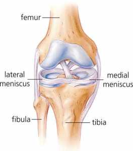 meniscus-injuries-and-tears