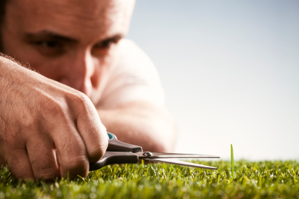 Perfectionist-Cutting-Grass.jpg