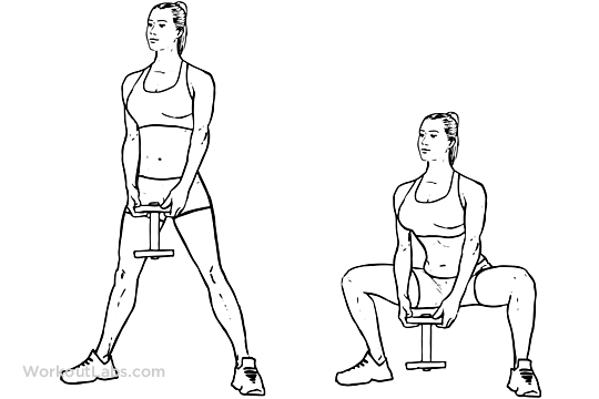 Front Dumbbell Squats Diagram Diy Enthusiasts Wiring Diagrams
